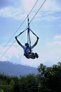 Contoh Flying Fox..